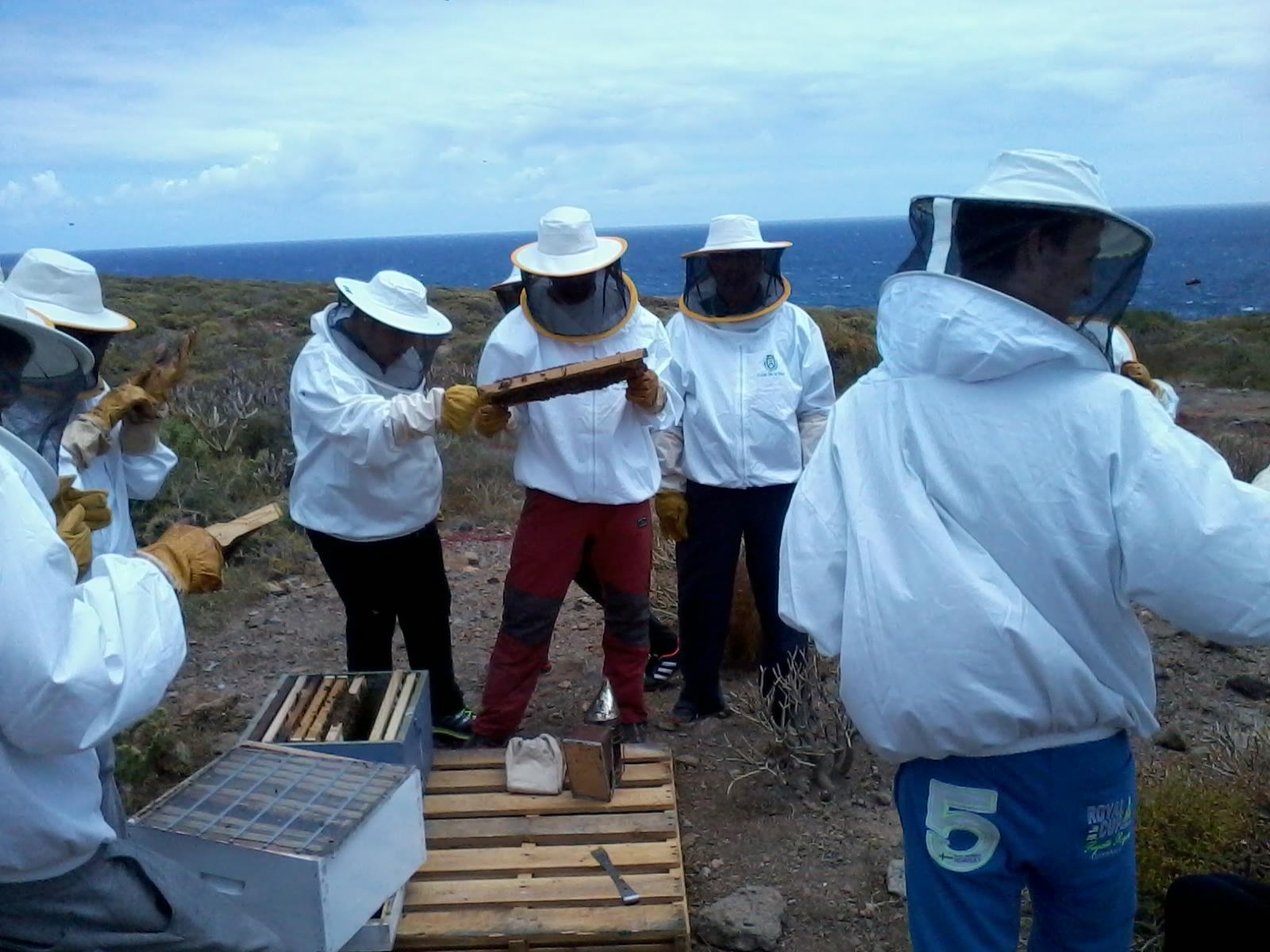 La apicultura de tenerife se muestra en los centros de ense anza casa de la miel - Trabajo desde casa tenerife ...