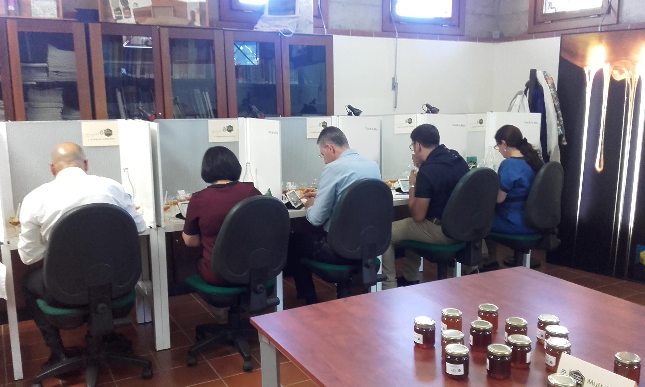 CAta de miel,  XIX concurso de mieles casa de la miel