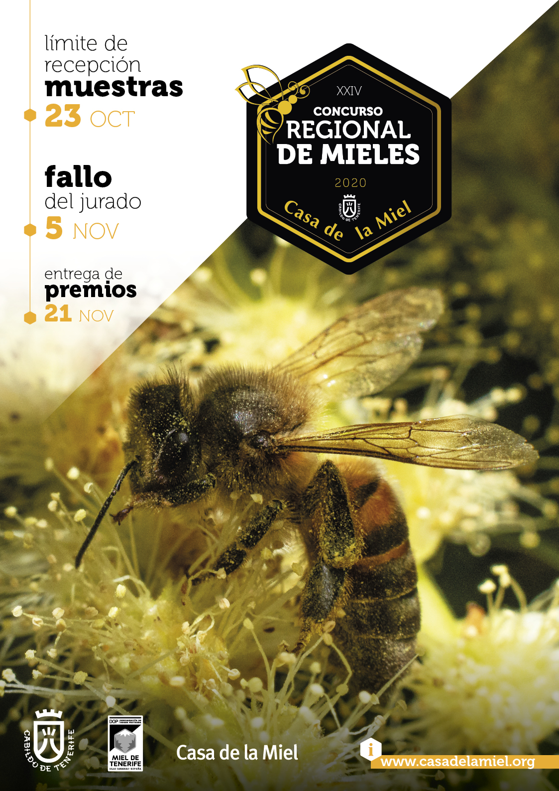 XXIV concurso de mieles CASA DE LA MIEL