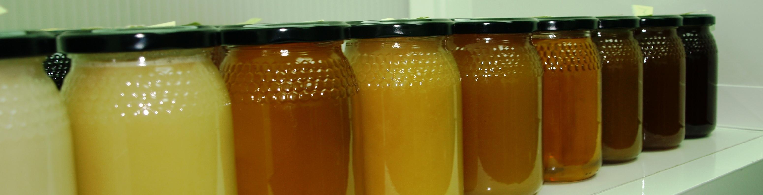 Tipos de miel multifloral | Casa de la miel